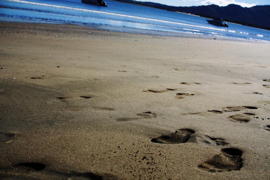 Wailowalowa Beach IMG_0151